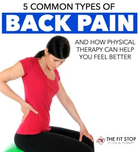 common types of back pain physical therapy