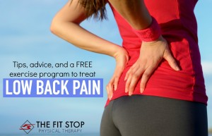 best exercises to treat low back pain fit stop