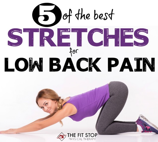 5 Great Stretches For Low Back Pain