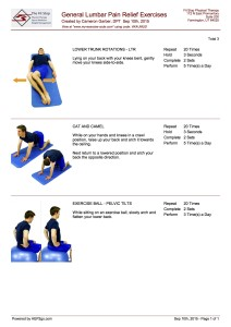 General Lumbar Exercises