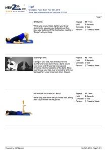 Hip Pain Home Exercise Program